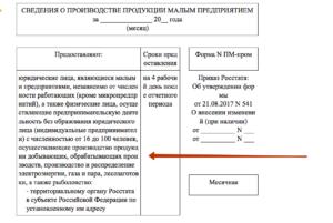 ПМ ПРОМ инструкция по заполнению