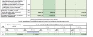 Образец заполнения РСВ с возмещением из ФСС