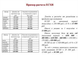 Перечень расходов ЕСХН