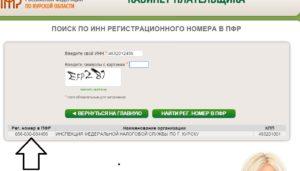 Поиск по ИНН регистрационного номера в ПФР
