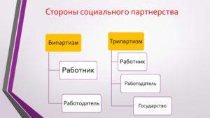 Стороны социального партнерства