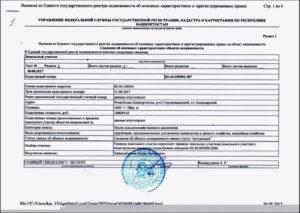 Выписка из реестра государственной собственности