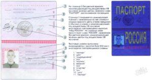 Проверка выдачи паспорта рф