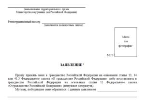Бланк заявления на гражданство рф в упрощенном порядке 2019