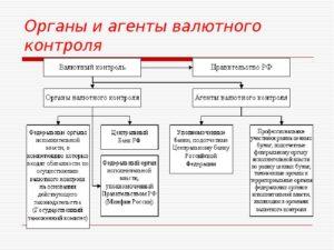 Органы и агенты валютного контроля