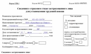 Форма СПВ-2: образец заполнения